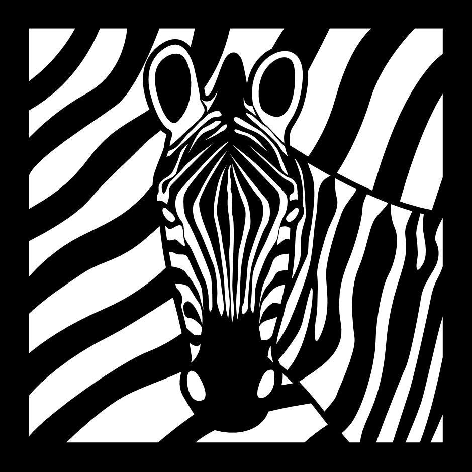 Agencja Zebra - Dawid Sawicki